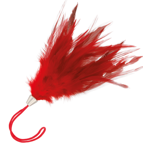 Darkness Red Feather